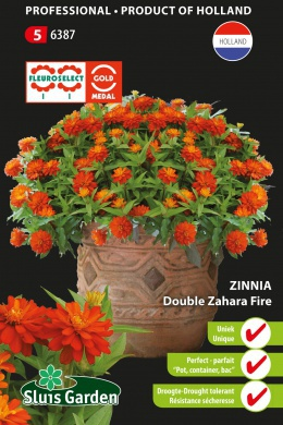 Zinnia Zahara Fire double