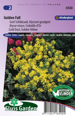 Golden Fall, Alyssum goudgeel