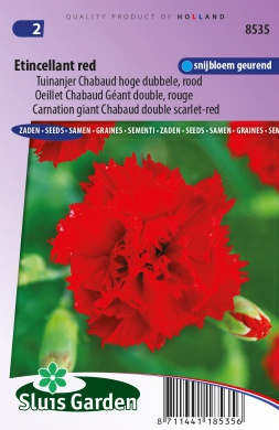Tuinanjer Chabaud hoge dubbele Etincellant red, rood