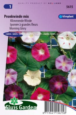 Klimmende Winde Choice Mixed (Ipomoea)