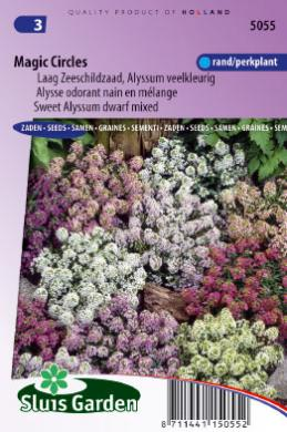 Schildzaad Magic Circles Mix (Alyssum)