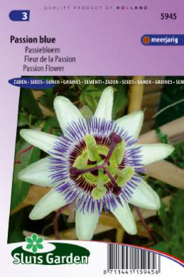 Passiebloem Passion Blue